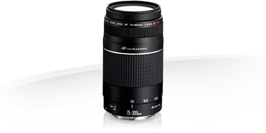 canon zoom lens ef 75 300 firmware